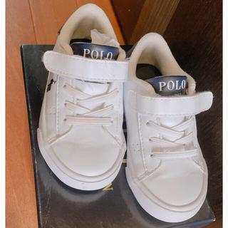 POLO RALPH LAUREN - POLO ラルフローレン キッズ 13cm
