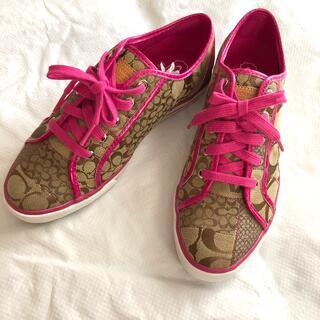 COACH - COACH スニーカー (靴)