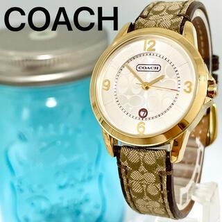 COACH - 149 COACH コーチ時計 レディース腕時計 シグネチャー柄 ゴールド