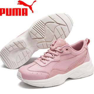 PUMA - PUMA プーマ CILIA LUX シリアLUX  ROSE/SIL 24cm