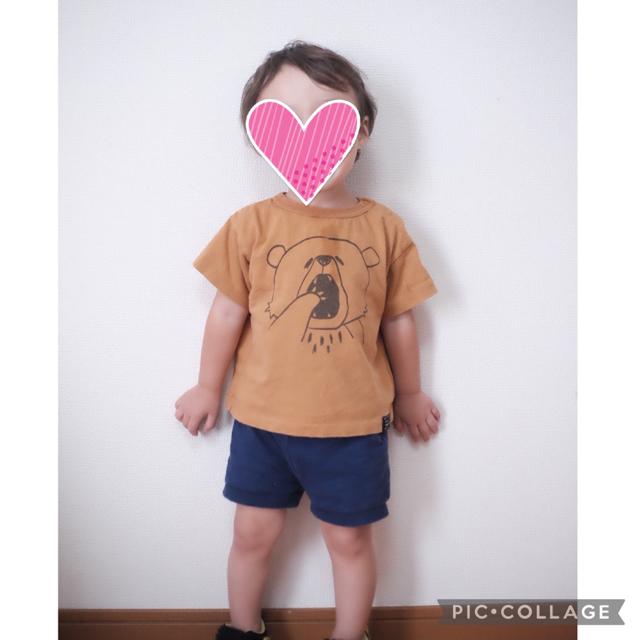 BREEZE(ブリーズ)のブリーズ くまさん 半袖 tシャツ トップス  保育園 キッズ/ベビー/マタニティのキッズ服男の子用(90cm~)(Tシャツ/カットソー)の商品写真