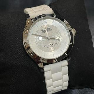 COACH - 新品★COACHコーチ腕時計レディース★ラバーベルト白