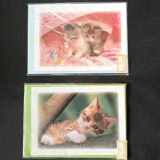 子猫のポストカード 2セット(カード/レター/ラッピング)