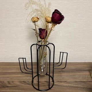 フランフラン(Francfranc)のワイヤーフラワーベース サボテン カクタス アイアン ブラック グリーンポット(花瓶)