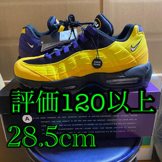 NIKE - 28.5cm NIKE AIR MAX 95 NRG LEBRON/LAKERS