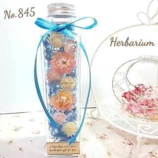 ハーバリウム No.845 ガーリーブルー 四角瓶 (その他)
