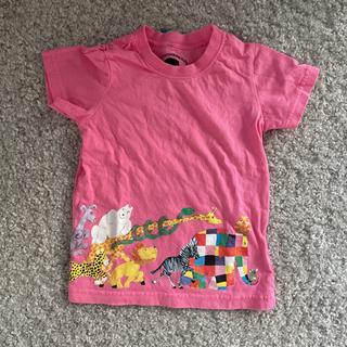 Branshes - ブランシェス Tシャツ