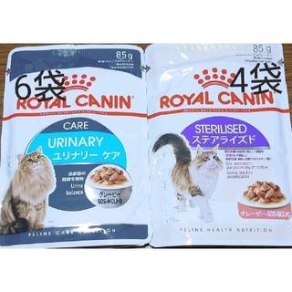 ロイヤルカナン(ROYAL CANIN)のロイヤルカナン ウェットフード ユリナリーケア ステアライズド 合計10袋(ペットフード)