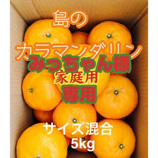 みかん 春の高級柑橘 島のカラマンダリン 家庭用5kg(フルーツ)