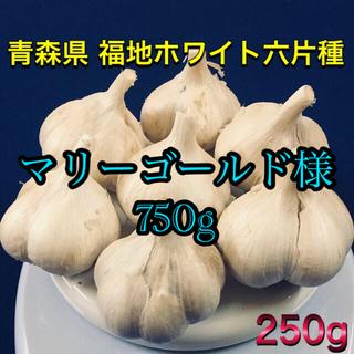 青森県 にんにく 福地ホワイト六片種 750g(野菜)
