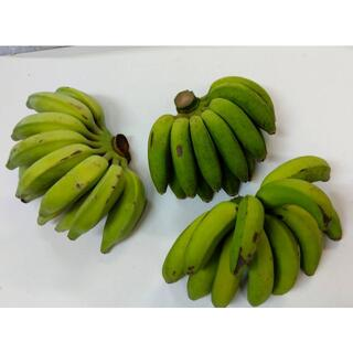 沖縄本島北部産 島バナナとアップルバナナの1Kgセット!(フルーツ)