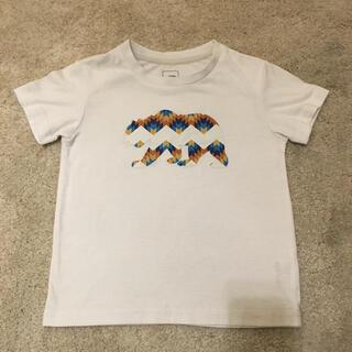 THE NORTH FACE - ノースフェイス/North Face Tシャツ 110 ホッキョクグマ ベアー