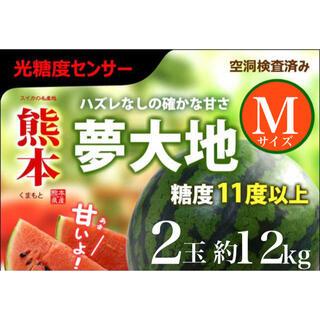 光糖度センサー選果品!夢大地鹿本ブランド【すいか】秀品Mサイズ 2玉約12kg(フルーツ)