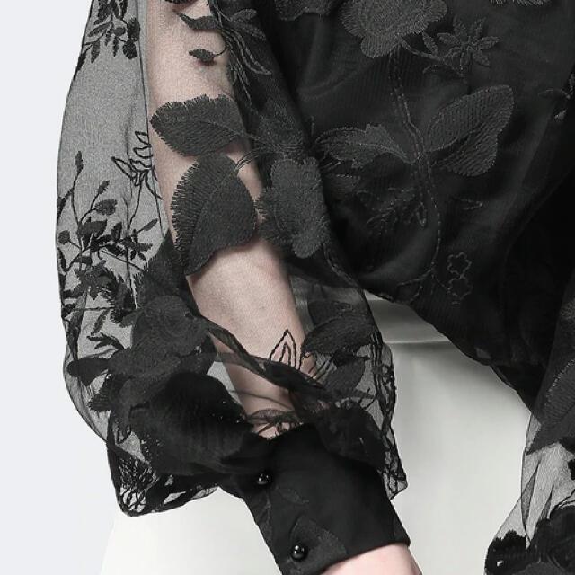 レディース レース 花柄 長袖 パフスリーブ レディースのトップス(シャツ/ブラウス(長袖/七分))の商品写真