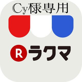 ポケモン(ポケモン)のCy様専用 ポケモンカードダスセット(シングルカード)