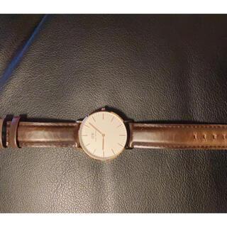ダニエルウェリントン(Daniel Wellington)の腕時計レディース(腕時計)