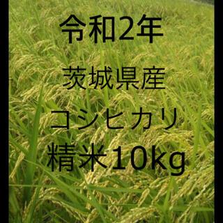 新米 令和2年産 茨城県 コシヒカリ 白米 10kg 精米(米/穀物)
