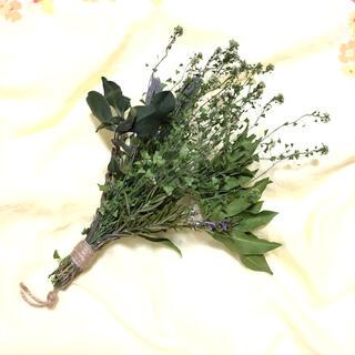 シンプルなグリーンリーフの花束 ナチュラル ハーブ 自然素材 花材 T(ドライフラワー)