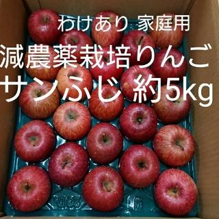 減農薬栽培りんご サンふじ約5kg(わけあり家庭用)(フルーツ)