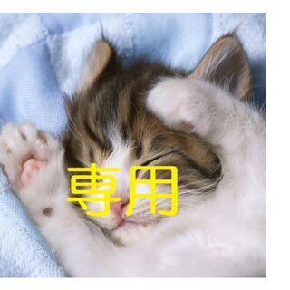 フジツウ(富士通)の富士通 SH54 ノートパソコン i5 8GB 新品高速SSD DVD カメラ(ノートPC)