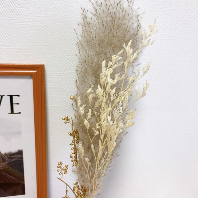 ショート 大振り パンパスグラス テールリード  北欧 韓国インテリア ゴールド ハンドメイドのフラワー/ガーデン(ドライフラワー)の商品写真