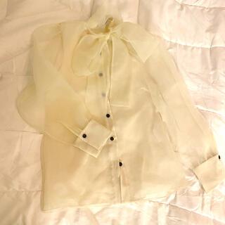 ZARA - ZARA オーガンジー blouse