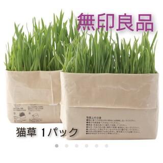 ムジルシリョウヒン(MUJI (無印良品))の無印良品 猫草栽培セット【 1パックのみ】 猫草(猫)