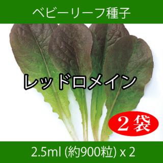 ベビーリーフ種子 B-06 レッドロメイン 2.5ml 約900粒 x 2袋(野菜)