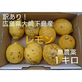 ナオ様専用【訳あり】無農薬!広島県大崎下島産 特別栽培レモン1キロ(フルーツ)