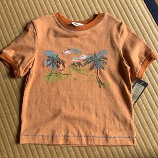 半袖Tシャツ(Tシャツ)