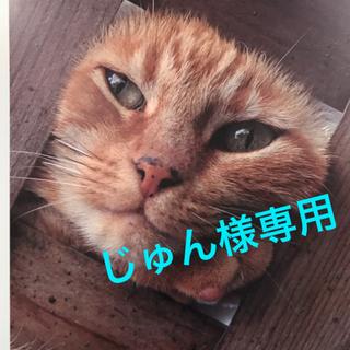 INTEGRATE - インテグレート グレイシィ  ホワイトパクト特製セット 【オークル10】