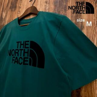 THE NORTH FACE - 【USAモデル】THE NORTH FACE Tシャツ/T030M