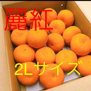 和歌山産 ギフト用 麗紅 2Lサイズ(フルーツ)