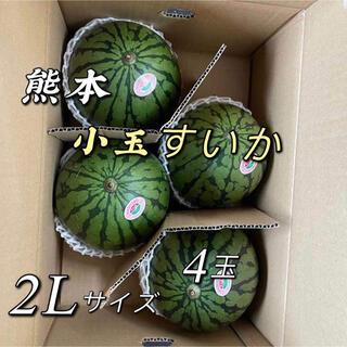 熊本 小玉すいか 4玉x 2   2Lサイズ(フルーツ)