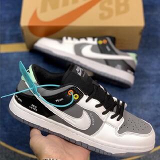 Nike Dunk SB VX1000