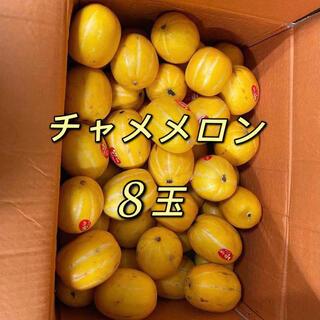 チャメメロン 8玉(フルーツ)
