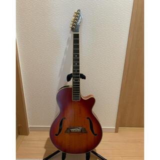 ギブソン(Gibson)のTakamine NPT115-6(アコースティックギター)