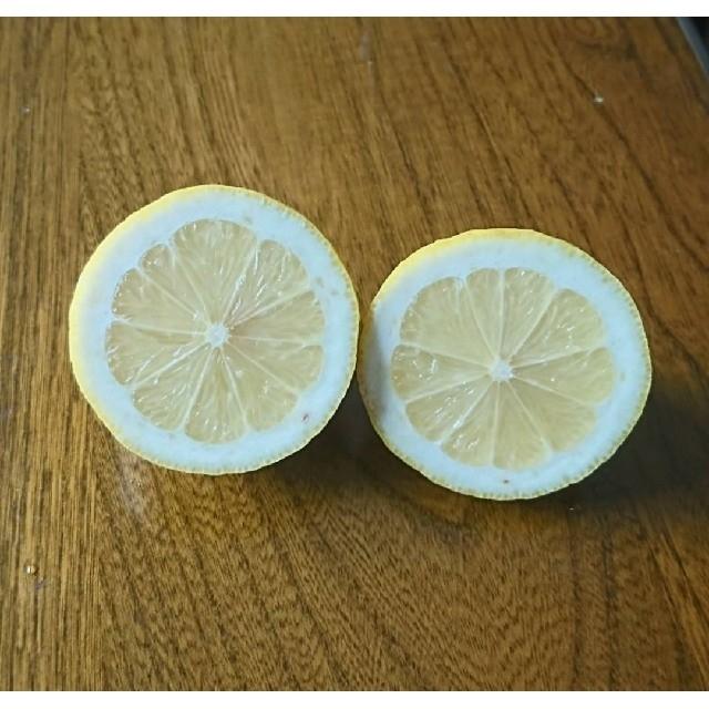 無農薬!広島県大崎下島産 特別栽培レモン 1.4キロ 食品/飲料/酒の食品(フルーツ)の商品写真