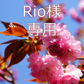 Disney - 【Rio様専用】ミッキーTシャツ