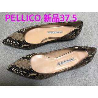 PELLICO - 新品。PELLICO ペリーコ パンプス 37.5 パイソン