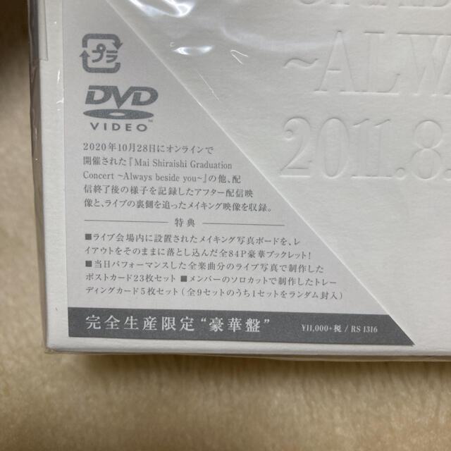 卒 コン dvd 白石 麻衣