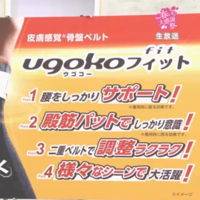 "Noble(ノーブル)のノーブル 皮膚感覚骨盤ベルト ""ウゴコーフィット""   黒LL〜3L 新製品 コスメ/美容のダイエット(エクササイズ用品)の商品写真"