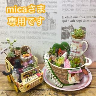 多肉植物 micaさま専用オーダーページ(その他)