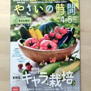 NHK 趣味の園芸 やさいの時間 2021年 04月号(専門誌)