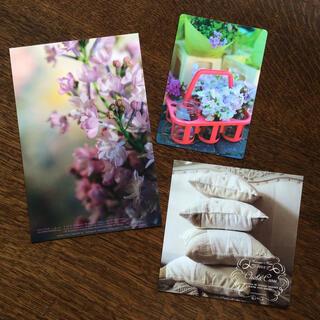 ハグオーワー(Hug O War)のハグオーワー  ポストカード(写真/ポストカード)