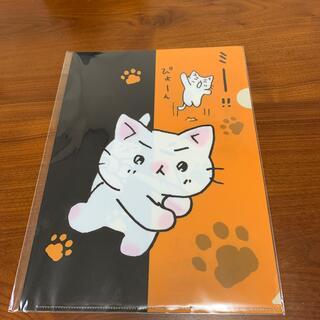 猫ピッチャー クリアファイル 未使用(クリアファイル)
