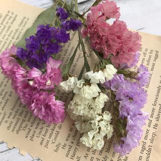 花材 カラフル スターチス 小分け セット ドライフラワー(ドライフラワー)