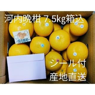 ★河内晩柑 7.5㎏箱込 みかん 熊本産 飾りシール付(フルーツ)
