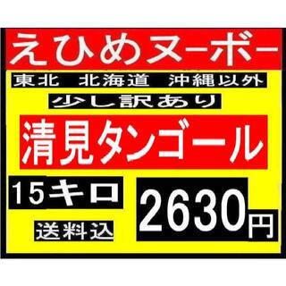 K15 えひめヌーボー 清見タンゴール 少し訳あり 15キロ(フルーツ)