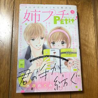 姉系Petit Comic (プチコミック) 2021年 05月号